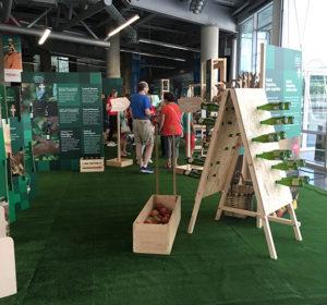 expo local